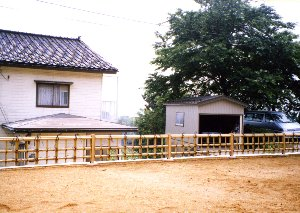 天然竹垣004